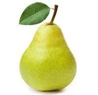 Pear Pregnant Week 15