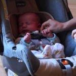 Newborn Car Seat – Safety Tips