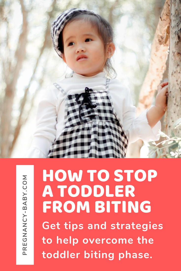 Toddler Biting Solutions